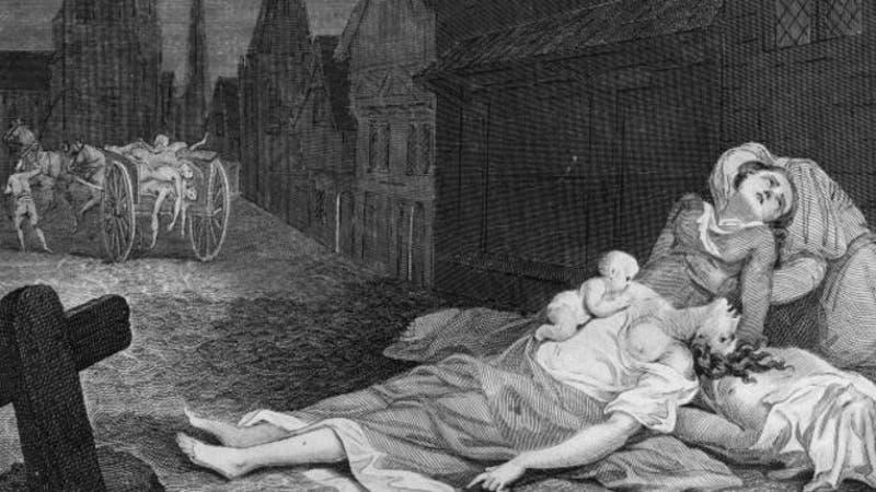 Qué es la peste bubónica y qué se sabe de los nuevos casos