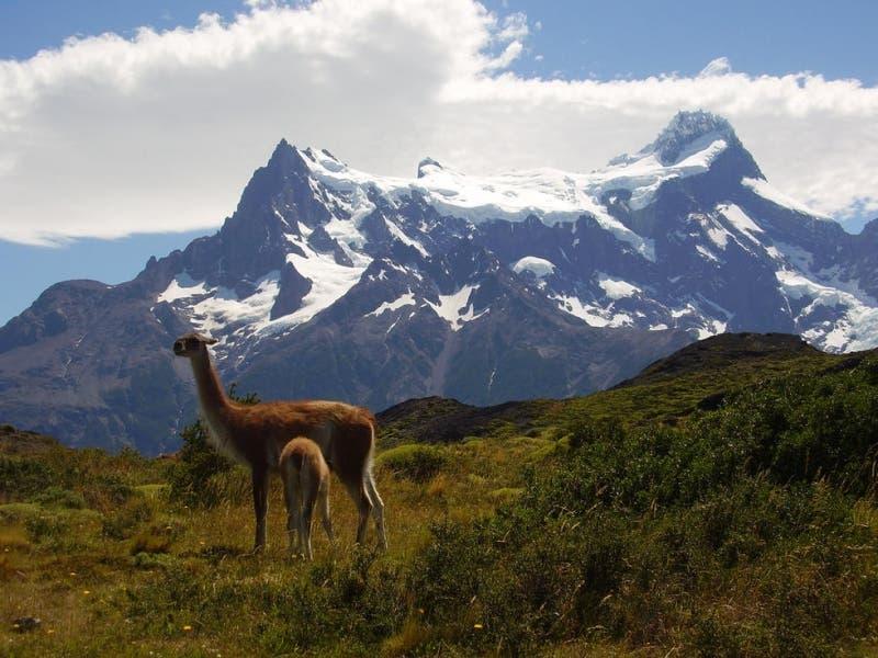 """Circuito """"W"""" Torres del Paine."""