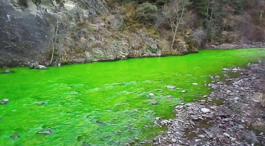Las aguas de un río español se vuelven verde fosforescente y causan inquietud | T13