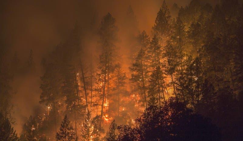 California usa reclusos para sus incendios forestales