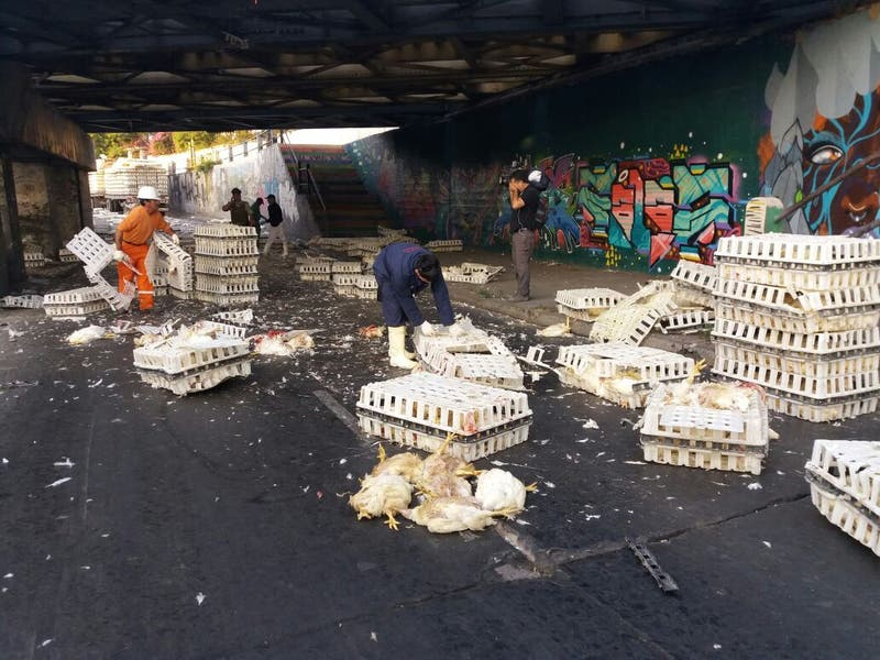 Camión con pollos choca con paso bajo nivel en San Bernardo