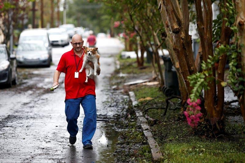 [FOTOS Y VIDEO] El conmovedor rescate de seis perros enjaulados tras paso del huracán Florence