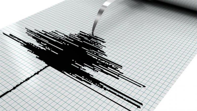 SHOA descarta alerta de tsunami en Chile tras terremoto en Nueva Zelanda