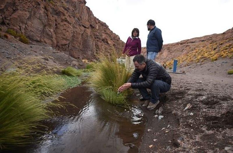 Ximena Fuentes por río Silala: Agua solo puede fluir hacia Chile