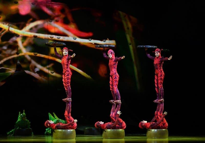 Cirque du Soleil en Chile: fecha de venta de entradas para OVO