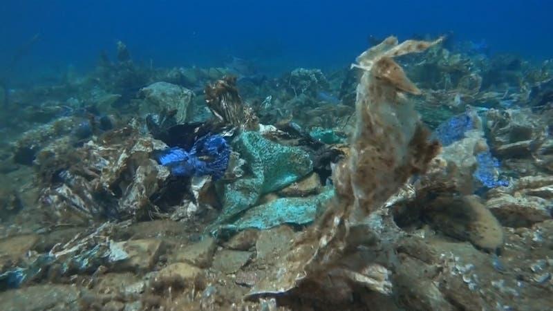 Un lamentable arrecife de corales de plástico se encontró en el Mar Egeo de Grecia