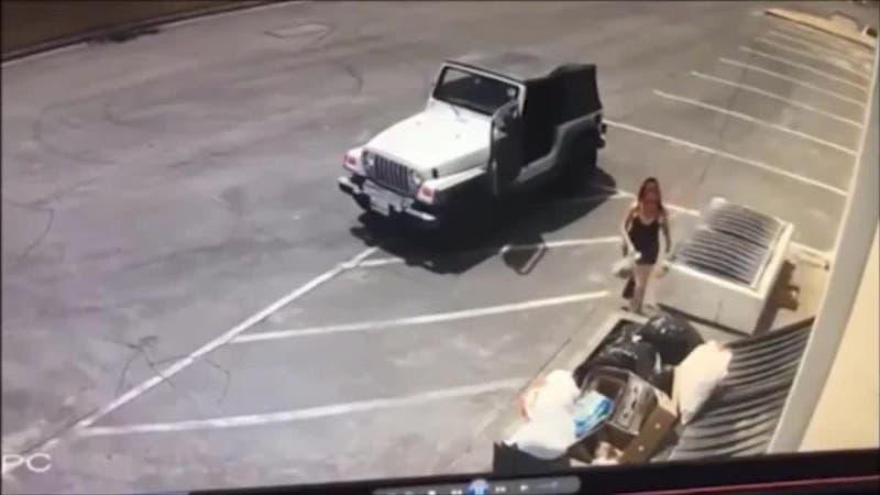 Sentencian con cárcel efectiva a mujer que tiró bolsa con 7 cachorros a un basurero