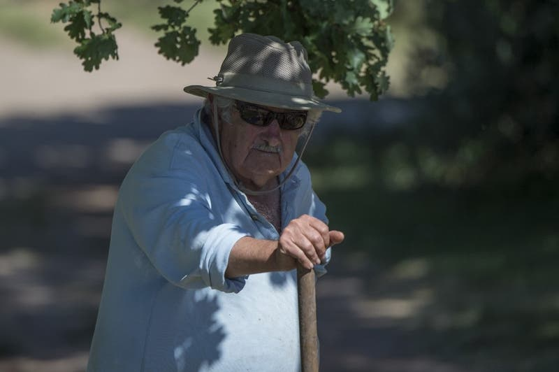 Pepe Mujica donó terrenos de su propia finca para construir viviendas para ex convictos