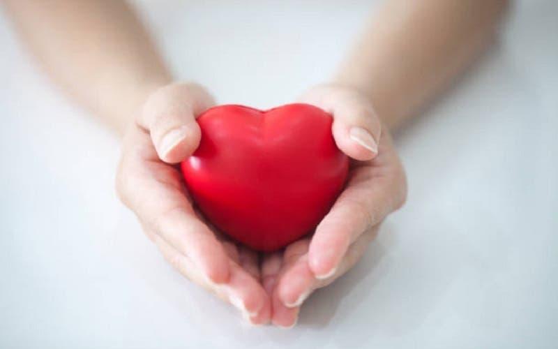 Día Mundial del Donante de Órganos: Mitos y realidades en Chile