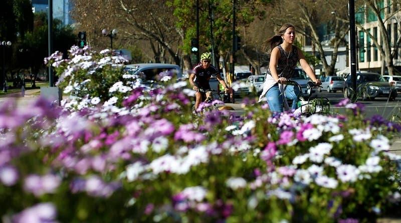 Se acerca la primavera: ¿Cómo diferenciar los síntomas del COVID-19 y la alergia?