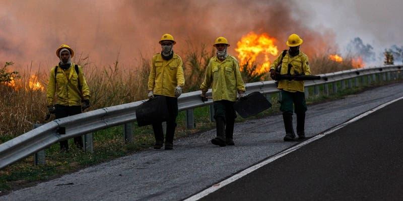 Pantanal, el otro incendio que azota a Brasil