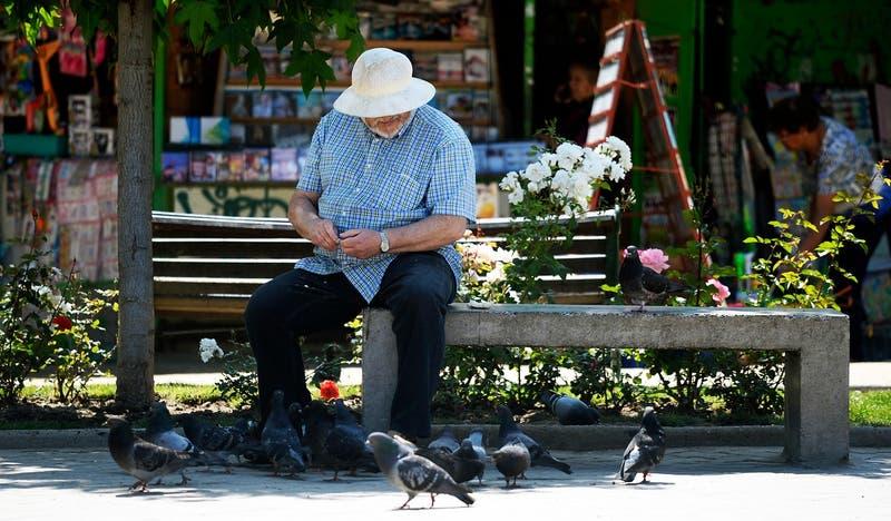 Estudio revela aumento de adultos mayores viviendo solos