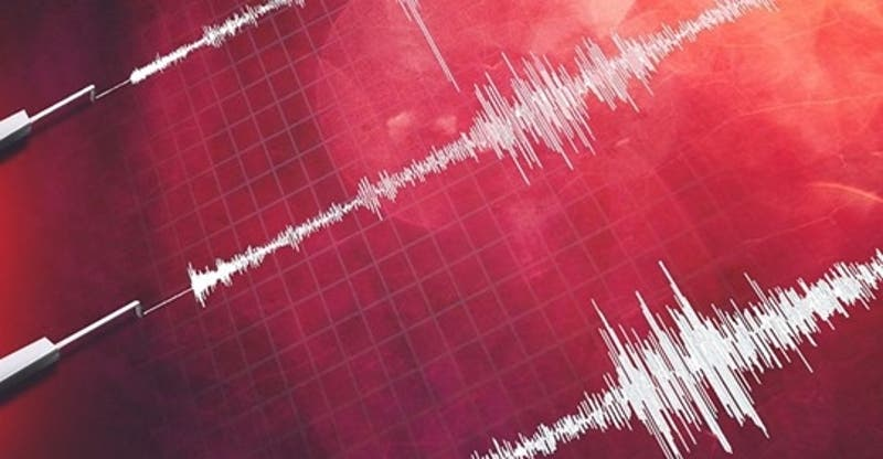 Shoa descarta riesgo de tsunami en costas chilenas tras terremoto en Japón