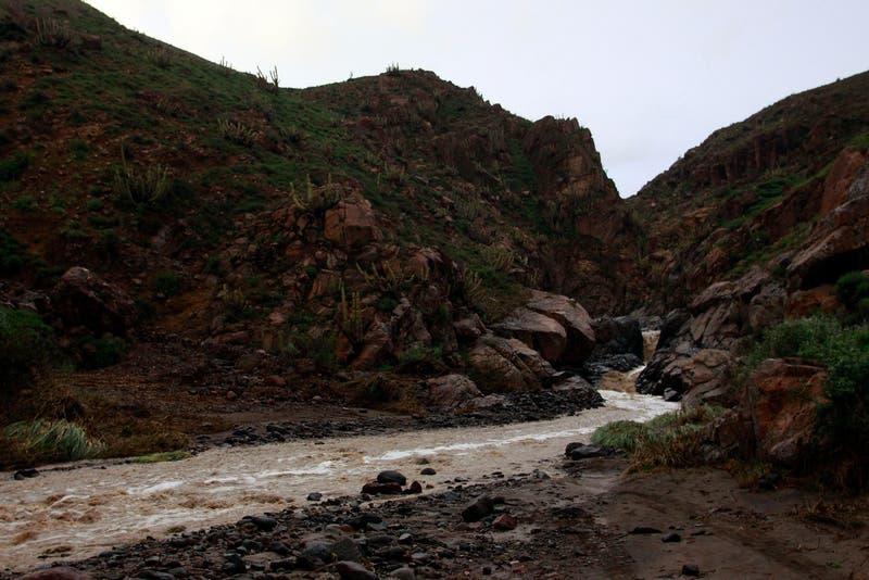 Onemi: 69 personas aisladas en región de Tarapacá por precipitaciones en el norte del país
