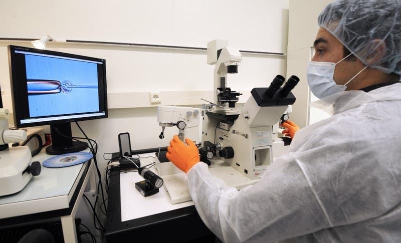 Yaravirus: Científicos descubren misterioso virus en Brasil