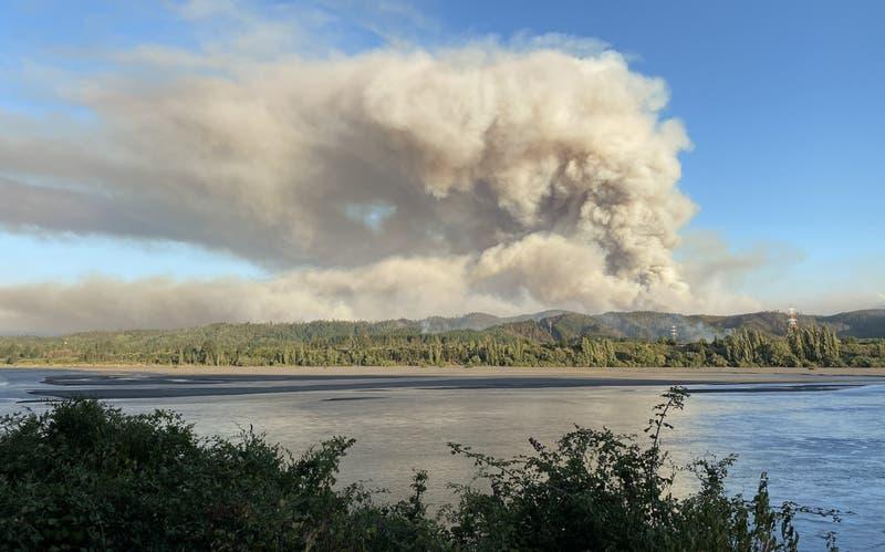 Decretan Alerta Roja por incendio forestal en Hualqui, región del Biobío