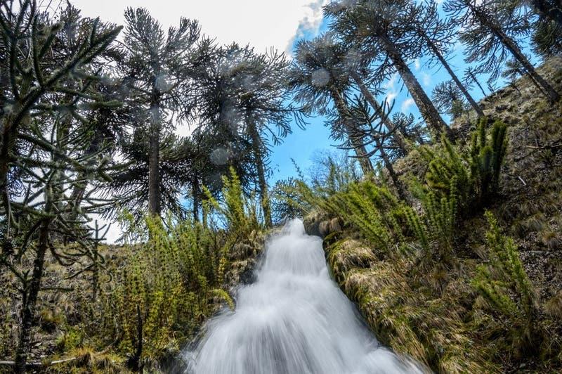 #Quédateencasa: 5 lugares turísticos de Chile que puedes explorar en Google Maps