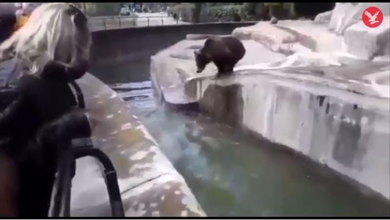Borracho lucha contra oso en zoológico de Varsovia, Polonia