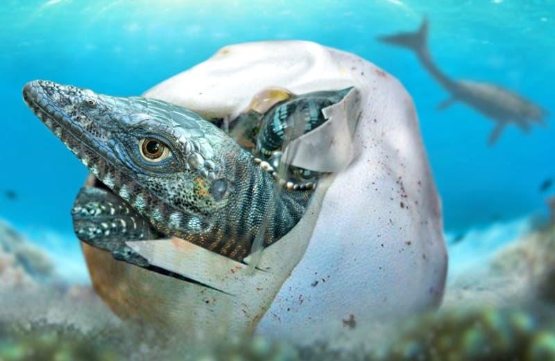 Descubren en la Antártica el huevo de dinosaurio más antiguo de la historia
