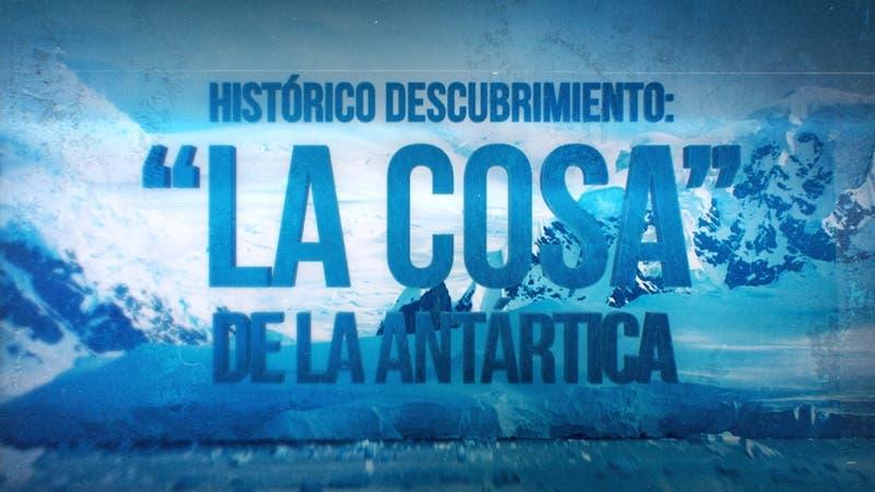 [VIDEO] Reportaje T13: Hallazgo en la Antártica del huevo más grande de la era de los dinosaurios
