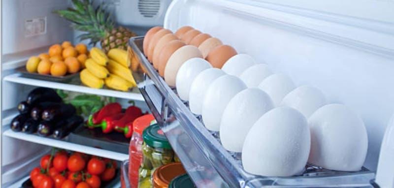 Expertas entregan consejos para conservar por más tiempo los alimentos