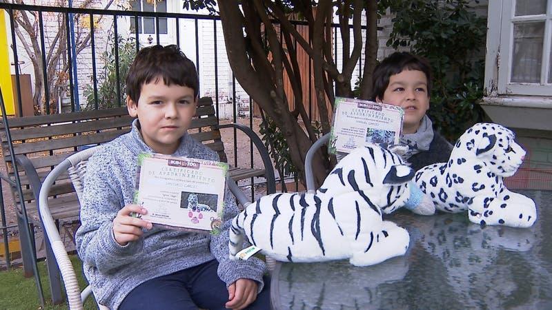 [VIDEO] 100 días sin visitas: La peor crisis en la historia del Buin Zoo