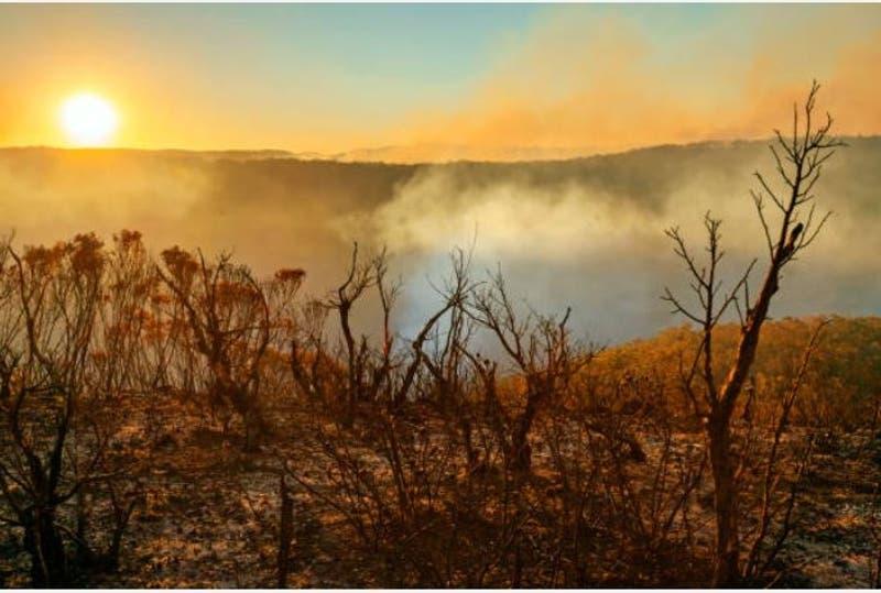 Estudio señala que harán falta décadas para bajar temperaturas con reducción de emisiones