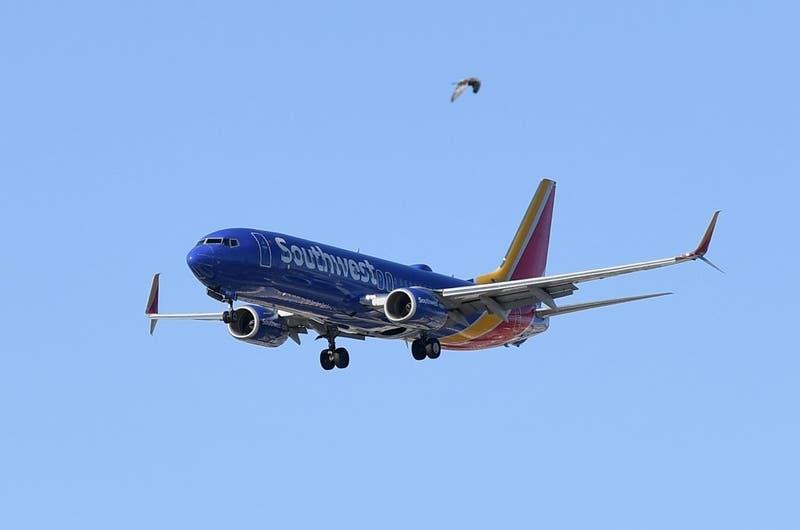 Niño con autismo y su familia son bajados de un avión por negarse a usar mascarilla contra COVID-19