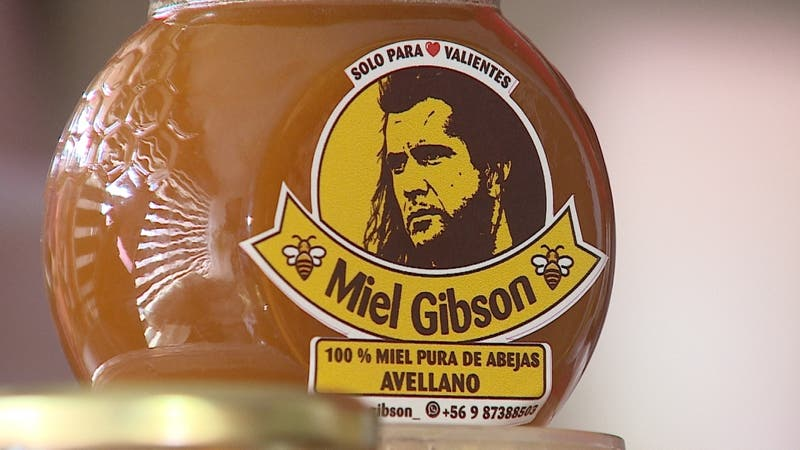 "Chilena podría ser demandada: El dilema entre Mel Gibson vs ""Miel Gibson"""