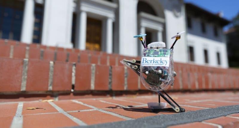 """Ia13: El robot """"Salto"""" y su capacidad para evitar y saltar obstáculos"""