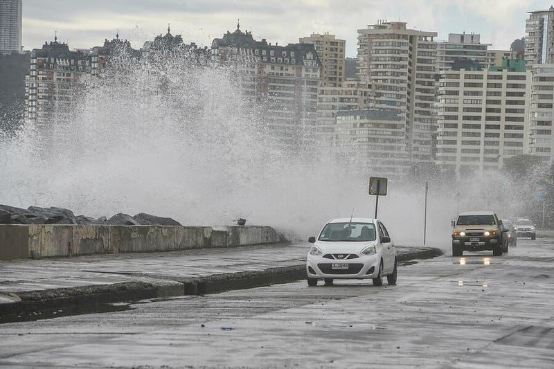 Fuertes vientos y marejadas en Valparaiso provocan caída de árboles y voladura de techos