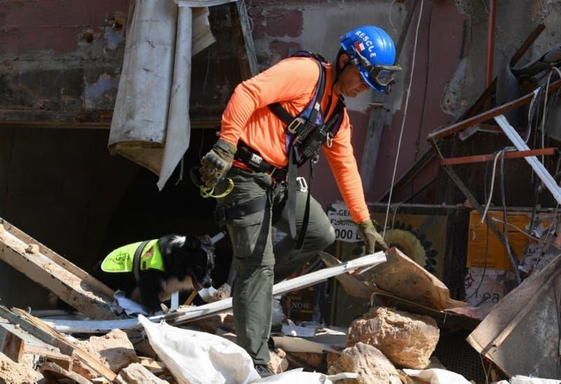 El perro de rescate chileno que es protagonista en Beirut