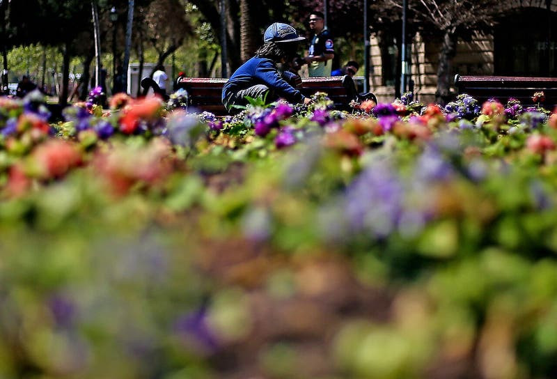 ¿Coronavirus o alergia primaveral? Los síntomas para evitar confundir el contagio