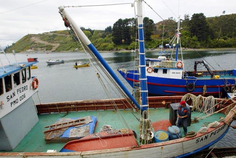 China suspende importaciones de empresa de mariscos chilena tras detectar COVID-19 en empaque