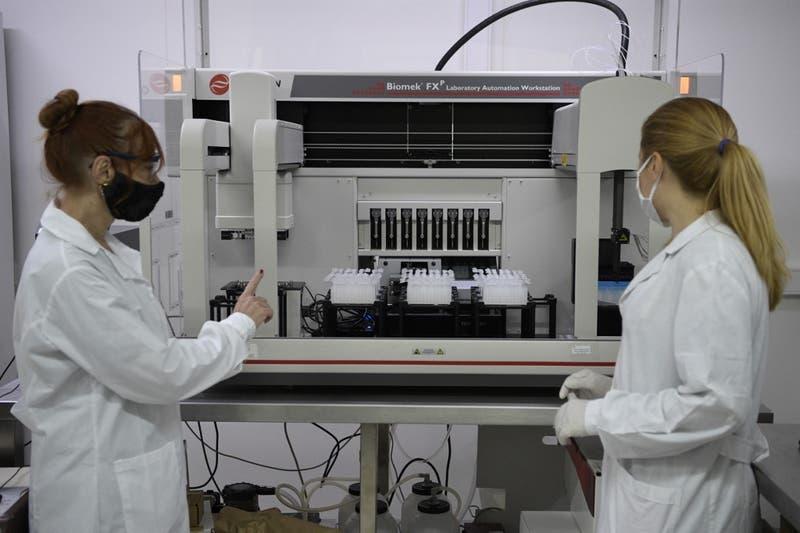 Con un tratamiento antiedad, científicos reestauran la visión en ratones
