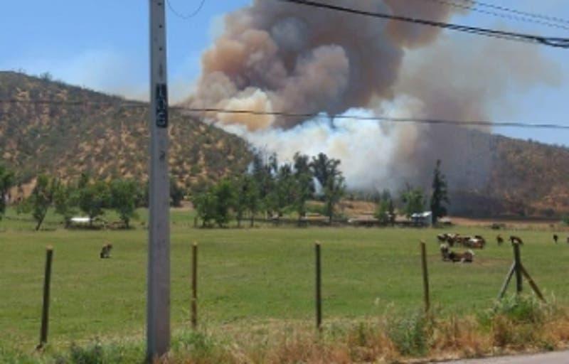 Onemi declara alerta roja en Melipilla y María Pinto por incendio forestal