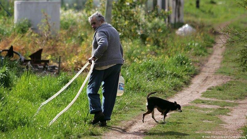 José Mujica quiere que lo entierren junto a los restos de su perra Manuela