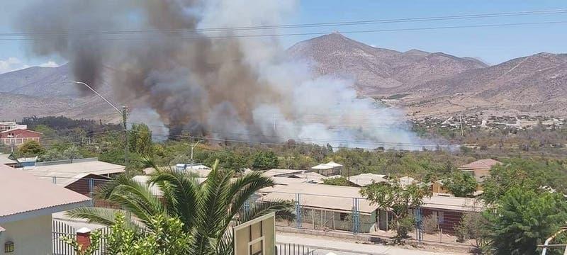 Decretan alerta roja en Monte Patria por incendio forestal fuera de control