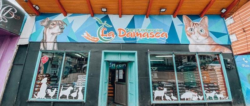 Comida para perros, corderos y gallinas: El negocio de madre e hija que triunfa en Coyhaique