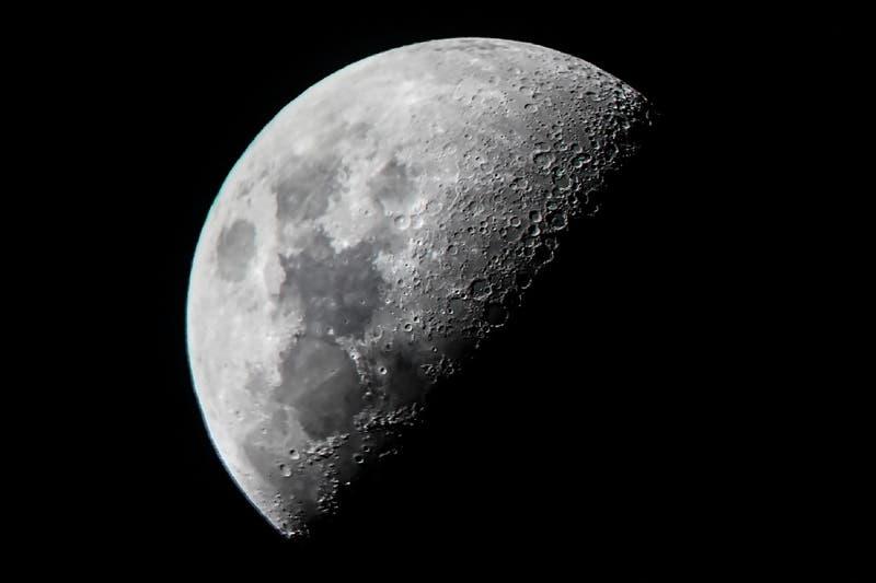 Esperma y óvulos serían enviados a la Luna como un Arca de Noé