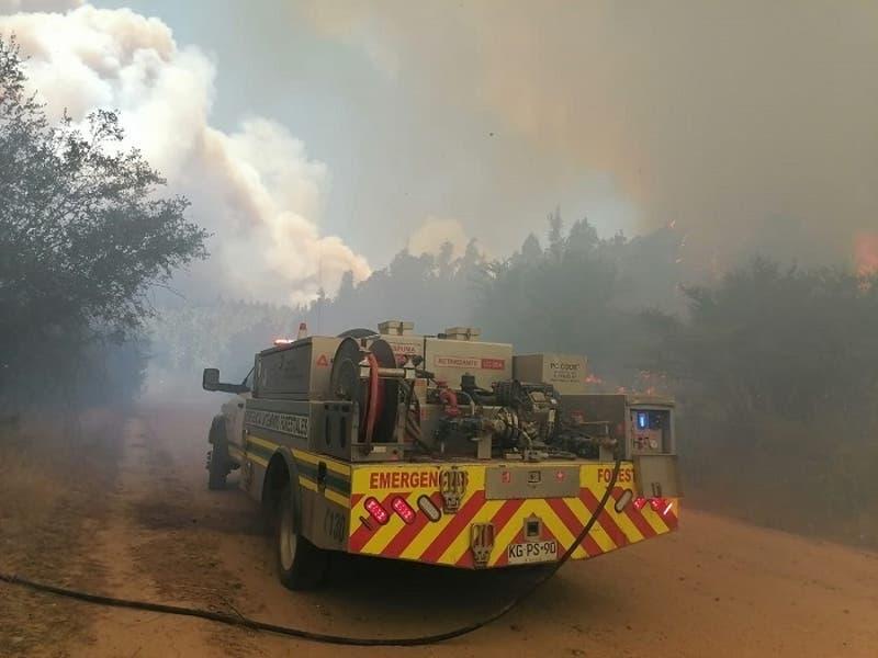 Decretan alerta roja en Valparaíso por incendio forestal cerca de la Reserva Peñuelas