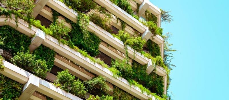 Concurso para emprendimientos sostenibles dará 120 mil euros a proyectos ganadores: ¿Cómo participar?