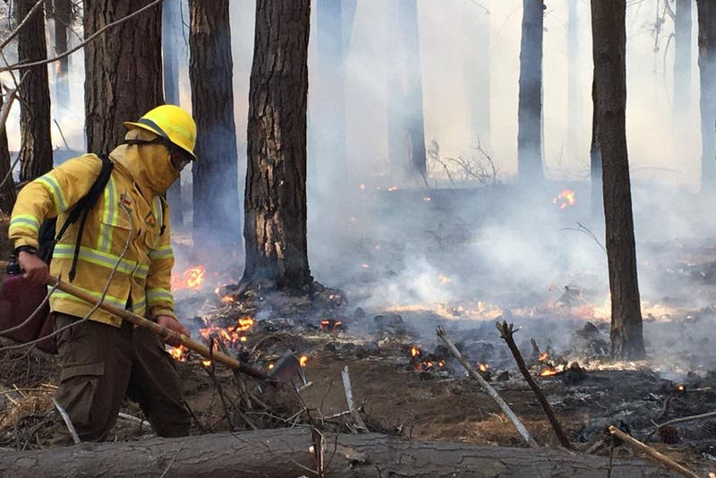 Mantienen Alerta Roja en Puerto Natales por incendio forestal