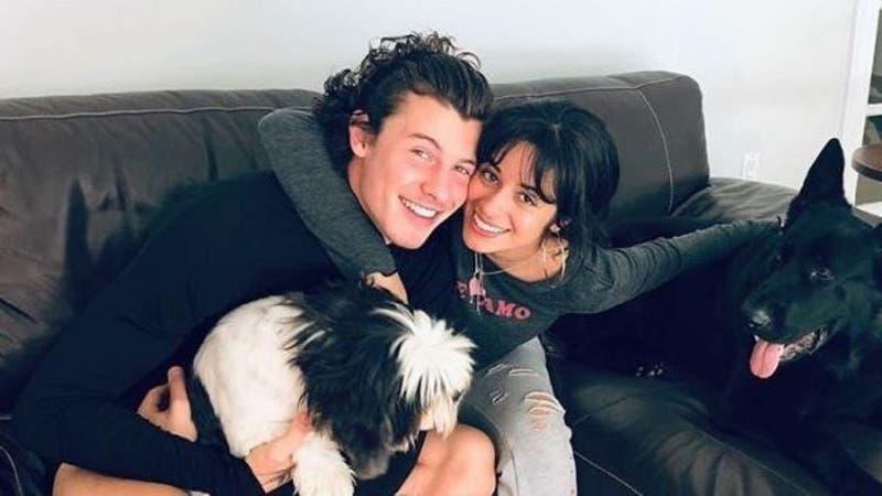 Camila Cabello y Shawn Mendes fueron asaltados en su casa: sujetos huyeron en auto del artista