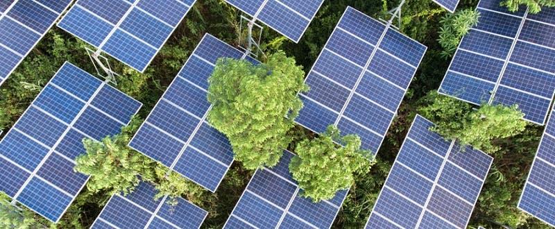 Programa da hasta 60 millones para que negocios generen su propia energía verde