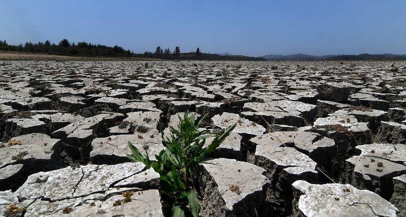 Déficit de lluvias se mantendría y situación más preocupante de megasequía se concentraría en el sur