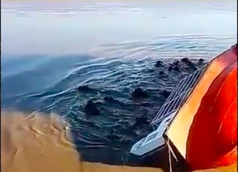 [VIDEO] Un barco con 60 vacas se dio vuelta en Argentina: La mitad murió ahogada