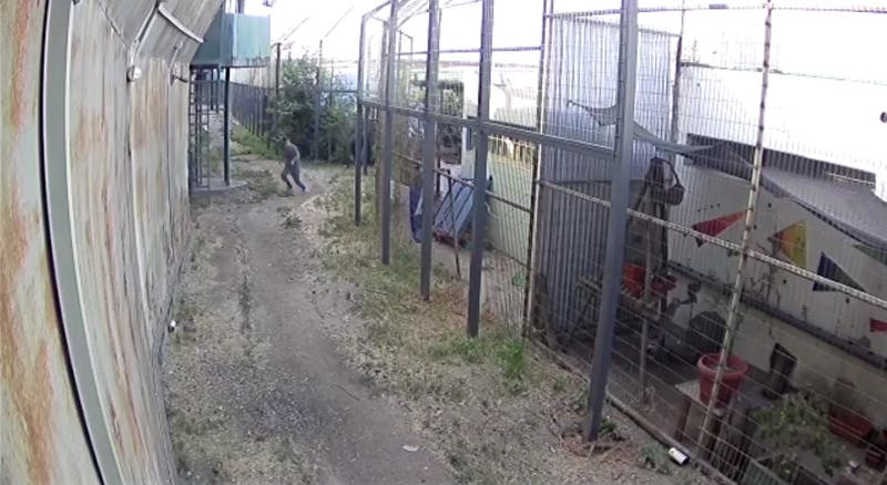 """Video capta fuga de menor detenido en """"Operación 320"""" desde el CIP de San Joaquín"""