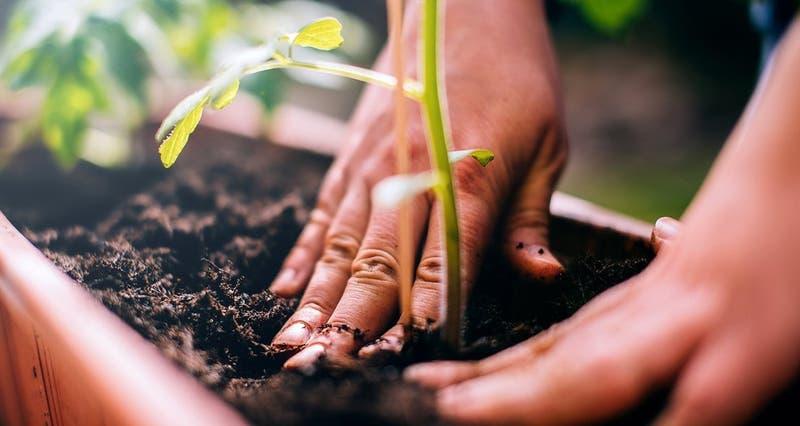 Pensando en el medio ambiente: ¿Qué atributo es más apreciado al elegir un producto o servicio?