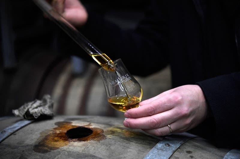 Perro vela por la buena fabricación del whisky en Escocia